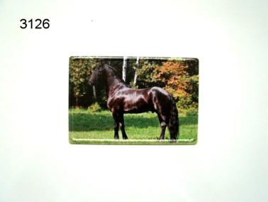 MAGNEET METAAL/FRIES PAARD/9X6CM/125