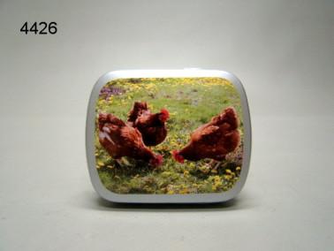 KIPPEN/BLIKJE MET PEPERMUNT/67