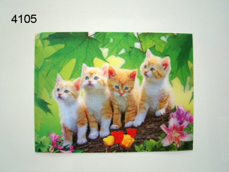 POES KITTENS/3D POSTER 39X29CM/91