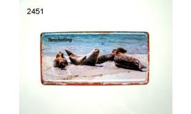 TERSCHELLING/MAGNEET ZEEHOND/125