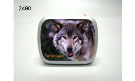 VELUWE/WOLF BLIKJE MET PEPERMUNT/67