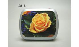 ROOS/GEEL BLIKJE MET PEPERMUNT/67