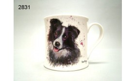 HOND/MOK BORDER COLLIE/112