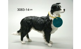 HOND PS/BORDER COLLIE/61