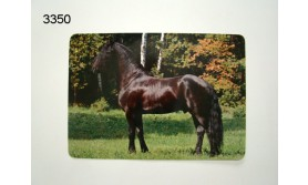 PAARD FRIES PLACEMAT Gelamineerd 41x29cm/73