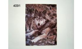 WOLF MET JONGEN/3D POSTER 39X29CM/91