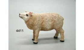 SCHAAP PS/TEXELAAR/11CM/65