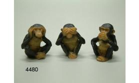AAP CHIMPANSEE HZZW/PS/3/5CM/85