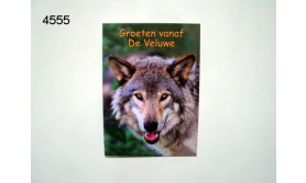VELUWE WOLF ANSICHTKAART/131