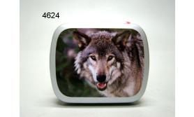 WOLF BLIKJE MET PEPERMUNT/67