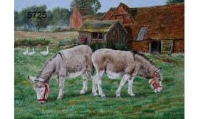 DONKEY SANCTUARY/BTC06E/200X140MM/110