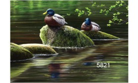 MALLARDS/JPC01E/200X140MM/110
