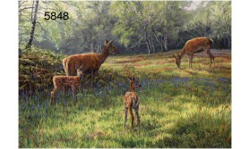 RED DEER FAMILY/MRC07E/200X140MM/110