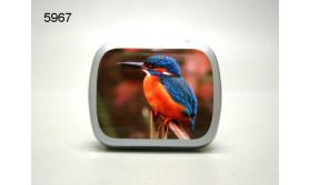 IJSVOGEL/BLIKJE MET PEPERMUNT/67