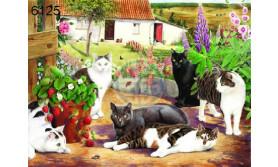 PUZZEL COOL CATS/BIG 500/63