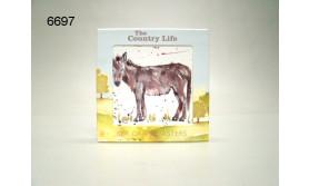 COUNTRY LIFE/EZEL ONDERZETTERSET/4/61