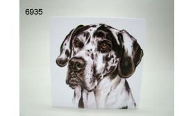 DEENSE DOG/AC-119/16X16CM/119