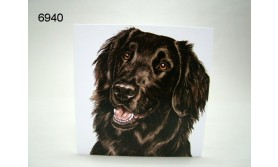 FLAT COATED RETRIEVER/AC-124/16X16CM/119
