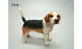 HOND PS/BEAGLE/61