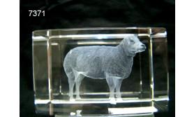 SCHAAP 3D GLASBLOKJE/5X5X8CM/115
