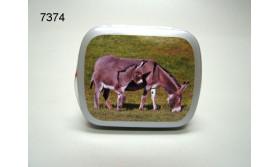 EZEL MET JONG/BLIKJE MET PEPERMUNT/67