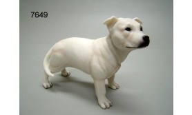 HOND PS/STAFF BULL TERRIER WIT/61