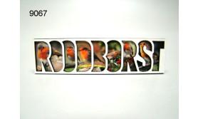 ROODBORST/LETTERMAGNEET/70