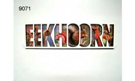 EEKHOORN/LETTERMAGNEET/70